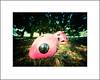 Garden ladybugs (art y fotos) Tags: lebambolemkxv weekendpinholecamera kodakektar100 yayoikusama footprintsoflife fosterbotanicalgarden honolulu oahu hawaii homemade handmade bambole bamboo pinhole bamboopinholecamera mediumformat 6x45 120 film