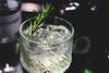 Le ricette cocktail più buone e famose da fare a casa, Gin Tonic cocktail, aperitivo (Wine Dharma) Tags: gin gintonic cocktail cocktailricette ricettecocktail macro ice ghiaccio rosemary recipes recipe ricette ricetta tonica water tonicwater drink aperitif ginandtonic