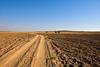 Thar Desert, Rajasthan. India (Betty C.H.) Tags: camelsafari camels holidays india jaisalmer jogganjaisalmercamp rajasthan samsanddunes thardesert travel vacation