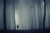 man_in_a_dark_forest_with_fog_by_macinivnw-d68mxhc (lgronseth@yahoo.com) Tags: autumn background beam black blue cold color dark dusk enchanted evening fairytale fall fantasy fantasyforest fog foggy forest ghost ground human landscape light magic man midnight mist misty mood morning mystery nature night rain rainy scary shadow silhouette soft transylvania tree weather wind woods