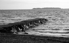 654 (www.ilkkajukarainen.fi) Tags: espoo visit sea meri tarvel traveling december joulukuu blackandwhite mustavakoinen haukilahti suomi suomi100 eu europa scandinavia finland finlande nature luonto landscape maisema