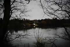 dark winterday 3:00pm@NRW, Germany (Amselchen) Tags: cabin season winter bokeh dof depthoffield leica leicarlens summicronr50mm sony a7rii alpha7rm2 sonyilce7rm2