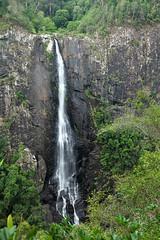 Ellenborough Falls (Harlz_) Tags: ellenboroughfalls waterfall australia nsw tall highest canon canon5dmarkii