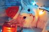 Madjo @БЛОЖИЌ#8 (Robert Krstevski) Tags: robertkrstevski photography photooftheday photograph cat cats pet pets animal animals eyes holidays christmas present gift katze gato gatos кошки кошка котки котка бложиќ божиќ cute cuteness love lovely peta