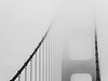 Golden Gate Bridge (B&W) (jonhuskisson) Tags: sanfrancisco california usa travel blackandwhite blackwhite bw monochrome bridge goldengatebridge goldengate architecture