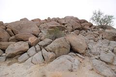IMG_5214 (Gibrán Nafarrate) Tags: laguna salada bajacalifornia lagunasalada baja vw volkswagen desert desierto nature camping canon