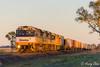 Crack of Dawn (Henry's Railway Gallery) Tags: ldp001 ldp003 6041 ldpclass emd diesel downeredi 6020class ge goninan ugl 5bm7 bm7 aurizon intermodal containertrain freighttrain