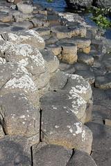IMG_3629 (avsfan1321) Tags: ireland northernireland countyantrim unitedkingdom uk giantscauseway causewaycoast wildatlanticway basalt rock stone blackbasalt column columnarjointing columnarbasalt ocean atlanticocean landscape