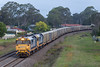 2017-12-24 Pacific National 8177-8142 Bargo 2120 (deanoj305) Tags: bargo newsouthwales australia au 2120 pacific national veolia waste recycling garbage train 8177 8142 main south line nsw new wales
