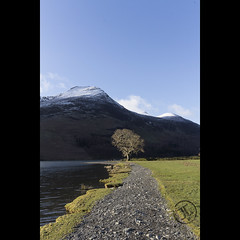 Buttermere Tree (JoshJackson84) Tags: canon60d sigma18250mm europe uk england cumbria lakedistrict lakes buttermere lake snow sun sunny water landscape