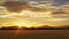 Sun down (malcolmgrant2) Tags: tripod newzealand canterbury sheffield sunset landscape fe28mm sonya7