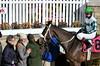 "2017-12-26 (12) r2 Elvis Trujillo on #8 No More Excuses (JLeeFleenor) Tags: photos photography ""laurel park"" maryland md ""maryland races"" horse jockey جُوكِي ""赛马骑师"" jinete ""競馬騎手"" dżokej jocheu คนขี่ม้าแข่ง jóquei žokej kilparatsastaja rennreiter fantino ""경마 기수"" жокей jokey người horses thoroughbreds equine equestrian cheval cavalo cavallo cavall caballo pferd paard perd hevonen hest hestur cal kon konj beygir capall ceffyl cuddy yarraman faras alogo soos kuda uma pfeerd koin حصان кон 马 häst άλογο סוס घोड़ा 馬 koń лошадь family laurelpark marylandraces races outdoors outside winter cold"