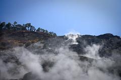 IMG_9406 (hopefuldoubtful) Tags: italy solfatara sulphur volcano