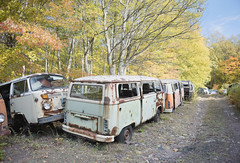 VW Graveyard (Jonnie Lynn Lace) Tags: abandoned america american graveyard car vw volkswagen fall autumn leaves colorful colours orange red blue green yellow pa pennsylvania tree trees decay urbex woods nature light sun day sunlight exterior outside outdoors vehicle old rust madeofmetal cars rural derelict peelingpaint paintchips texture detail textures transport metal classic flickr digital forest nikkor nikon d750 24mm colour colors coloful leaf headlight rusty details junkyard vehicles buggy vwbeetle daylight bright perspective october windshield truck wood bus