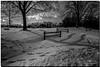 DECEMBER 2017  NGM_7038_3680-1-322 (Nick and Karen Munroe) Tags: snow snowfall snowstorm snowy winter wintertrees winterstorm wintry winterwonderland canada clouds cloudy beauty brampton beautiful blackandwhite bw blackwhite bandw monochrome mono nikon nickmunroe nickandkarenmunroe nature nickandkaren nick nikond750 d750 1424 1424f28 nikon1424f28 munroedesignsphotography munroedesigns munroephotography munroe karenick23 karenick karenandnickmunroe karenmunroe karenandnick karen landscape ontario outdoors ontariocanada hike heartlakeconservationarea heartlake heartlakeconservation