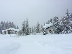 Winter (oonaolivia) Tags: flims graubünden grisons switzerland schweiz landscape landschaft snow schnee winter walking