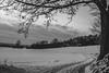 Way too cold... (mripp) Tags: art vintage retro old landscape landschaft nature natur schwarz weiss black white mono monochrom outside leica m10 summilux 50mm