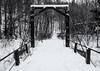 Cold (Yewbert The Omnipotent) Tags: toronto canada lightroom parks city bridge ice snow bw blackwhite nikon d750 tamron 35mm graffiti