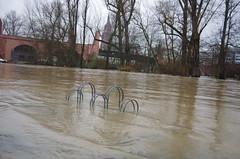 PK5_3769 (mainstrand) Tags: frankfurtammain main mainufer hochwasser fluss flussufer fahrradständer maininsel dom