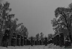 Ruins (kentkirjonen) Tags: abandoned övergivet övergiven lumix fz300 old gammal sweden sverige dalarna ue decay förfall panasonic ruins ruiner träd trees bw