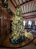 IMG_20180107_105727.jpg (imfaral) Tags: biltmore christmas