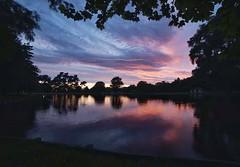 Framing (malcolmgrant2) Tags: newzealand christchurch hagleypark lake colours trees sunrise mefototripod samyang14mm sonya7