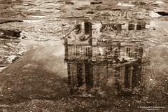 Reflection of Cathédrale Notre Dame - Paris/FR (About Pixels) Tags: 0504 10001500ac 2017 4earrondissement aboutpixels fr france frankrijk iledefrance latemiddeleeuwen latemiddleages lenteseizoen mnd05 middeleeuwen notredame notredamedeparis ourladyofparis parijs paris parisianregion springseason activiteit activity agenda algemeen anno1163 appliedart appliedarts architecture architectuur art bezienswaardigheid building cathedraal collecties gebouw historicalbuilding historicalsite historie historischbouwwerk historischelokatie kunst medieval mei placeofinterest régionparisienne sight stedelijk toegepastekunst urban îledefrance history