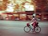 Bicycle Rider (Nishan Wanigasekara) Tags: rider bike bicyclerider