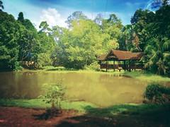 Skytrex Melaka - Botanical Garden - http://4sq.com/20LyxRV #skytrex #green #nature #tree #grass #travel #holiday #holidayMalaysia #travelMalaysia #Asian #Malaysia #Malacca #大自然 #草 #树木 #旅行 #度假 #马来西亚旅行 #马来西亚度假 #亚洲 #马来西亚 #发现马来西亚 #发现大马 #自游马来西亚 #马六甲 #park #公园