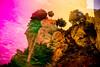 20171031-140 (sulamith.sallmann) Tags: landschaft pflanzen baum blur botanik bunt bäume colorful effect effekt felsen filter folie folientechnik italia italien italy landscape messina natur nature pflanze plants sicilia sizilien stein stone tree unscharf it sulamithsallmann
