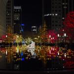 Christmas Lights Temple Square Reflecting Pool thumbnail