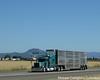 Six D Cattle Co. Peterbilt 379 (Michael Cereghino (Avsfan118)) Tags: six d cattle co company peterbilt 379 4 axle quad livestoc bull wagon rack bullwagon bullrack trucking truck