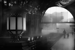 Ghost train station (Alejandro Lluvia) Tags: tales ghost train station black white mist backlight rail lamppost