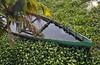 KERALA KOCHI BACKWATERS & BOAT 726 (opaxir) Tags: kerala kochi water marsh india backwaters