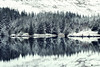Snow covered tree's reflecting in the lake (technodean2000) Tags: beacons reservoir brecon snow nikon d810 lightroom uk long exposure forest tree mountain landscape
