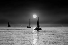 Sailing at sunset - Tel-Aviv beach - B&W (Lior. L) Tags: sailingatsunsettelavivbeach sailing sunset telaviv beach blackandwhite blackwhite monochrome sea seascapes silhouettes telavivbeach