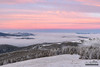 West of the Divide (kevin-palmer) Tags: helenanationalforest granitebutte montana lincoln rockymountains nikond750 whitebarkpine trees early morning dawn sunrise december winter cold snow snowy frost frosty frosted clouds color colorful orange gold golden yellow pink fog foggy summit peak tamron2470mmf28 rimeice inversion
