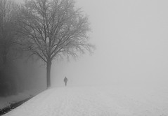 (Magdalena Roeseler) Tags: street streetphotography candid people winter snow cold bw blackandwhite monochrome black white fineart tree alone fog olympus inpublic zuiko switzerland landscape