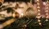 Merry Christmas (wigerl - herwig ster) Tags: fujixt1 fujicam christmasbokeh xmas 35mm christmastree kärnten bokehlove 2017 baum tree fuji fuji35mm14 fujilens österreich kugel bokeh merrychristmas carinthia winter europa gold licht light feldkirchen foto tollestimmung festbrennweite weihnachten austria tiffen europe geolden lightroom chrsitmasbball