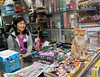 Kwik-E-Mart Cat Lady (cowyeow) Tags: food shamshuipo asia asian funnychina funny hongkong funnyhongkong 香港 kowloon china chinese street market women woman cute asiangirl chinesegirl people candid urban lady cat pet magazines magazinestand