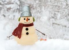 Bucket Head (Karen_Chappell) Tags: snowman bucket snow snowing snowy decor decoration noel xmas holiday christmas white red stilllife bokeh