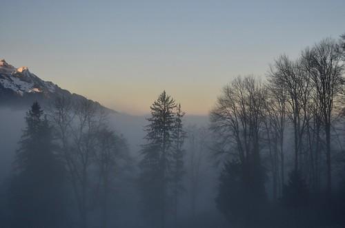 Nebelgrenze