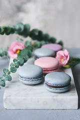 Pastel macaroons or macarons and flowers on marble (Arx0nt.) Tags: background cake colorful dessert flower food macaron macaroon marble pastel pink sweet eucalyptus assortment biscuit chocolate confection confectionery cookie copyspace french green pastry rose slate space stone toned traditional vintage present color love book notepad empty view yellow dating card meringue business write page gift texture blank box flat label