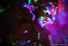 1-watermark (Brian M Hale) Tags: tower hill botanic botanical garden winter reimagined night boylston ma mass massachusetts brian hale brianhalephoto lights christmas holiday cherub imp statue creepy joann