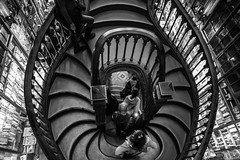 Livraria Lello (Howard Yang Photography) Tags: harrypotter bw blackandwhite porto portugal leicam spiralstaircase bookstore