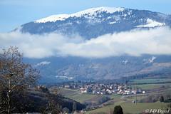 Dernier jour de l'an ! (jean-daniel david) Tags: paysage montagne suchet champvent ciel nuage champ forêt verdure bleu blanc village jura suisse suisseromande