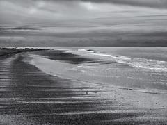 Shorelines (Tim Ravenscroft) Tags: shore seashore shoreline exmouth beach beachseascape monochrome blackandwhite blackwhite hasselblad hasselbladx1d x1d