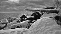 Light and shadows on the beach (mrsparr) Tags: humberbayparkeast toronto ontario canada landscape log icicles ice snow boulders rocks water sky clouds sunlight lowlight blackandwhite lakeontario humberbay trees contrast compositionallychallenged shadows light 7dwf theflickrlounge weeklytheme winter friendlychallenges