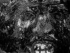 Suddenly This Face Was Looking Right At Me (bw version) (giveawayboy) Tags: crayon drawing sketch art acrylic paint painting fch tampa artist giveawayboy billrogers wmotf sasquatch bigfoot sighting creature cryptid