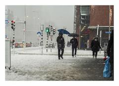 The first snow of the season (AurelioZen) Tags: europe netherlands zuidholland laanopzuid snow rotterdam brollies